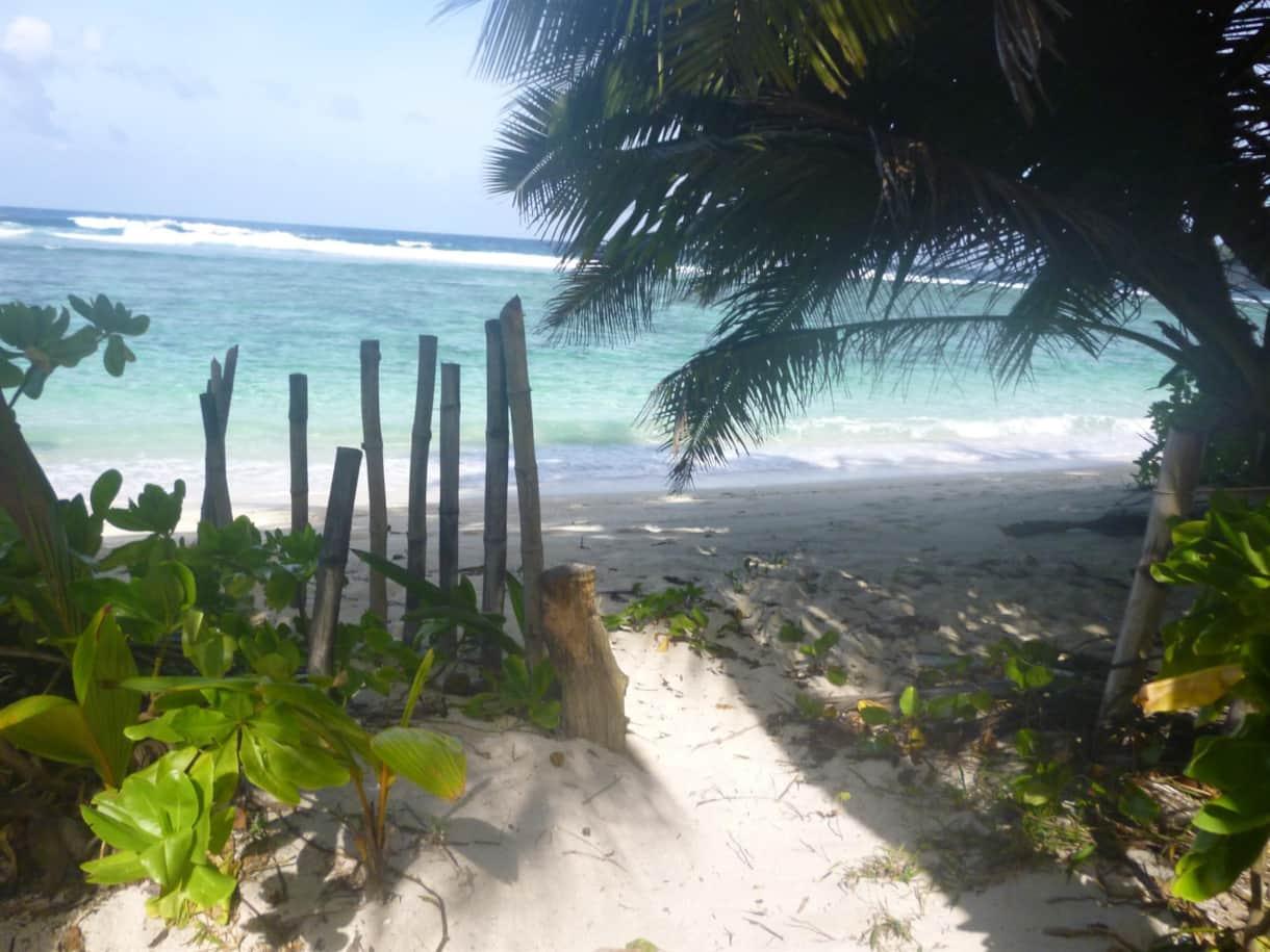Garden entrance to Anse Forbans beach - 15 steps from the beach house