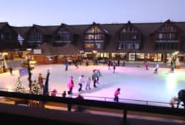 Ice skating rink - view from patio