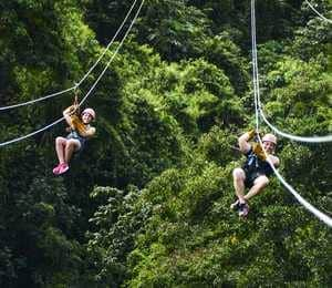 Zip lining at Monkey Jungle