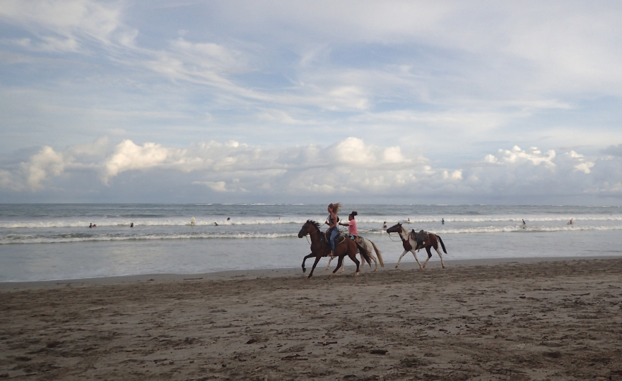 Horses Galloping on Samara Beach