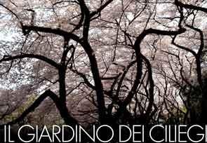 Il giardino dei ciliegi b&b