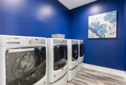 Exclusive Private Villas, 12 Bedroom Villa in Reunion Resort (E312) - Laundry Room