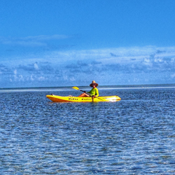 kayak the flats and sandbars in and around Key Colony Beach