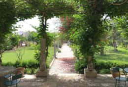Essiccatoio - patio and garden - Gagliano del Capo - Salento