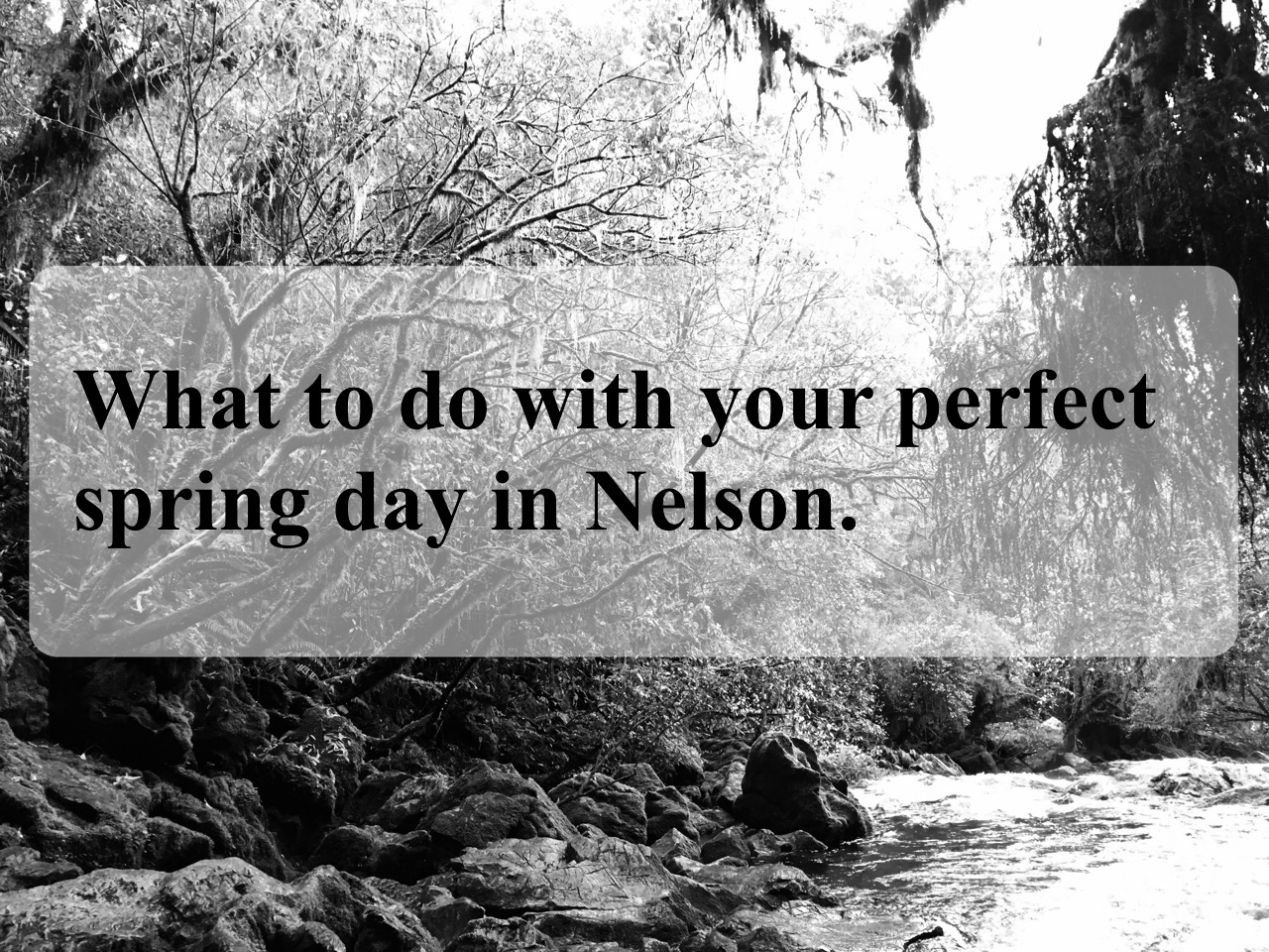What to do with your perfect spring day in Nelson