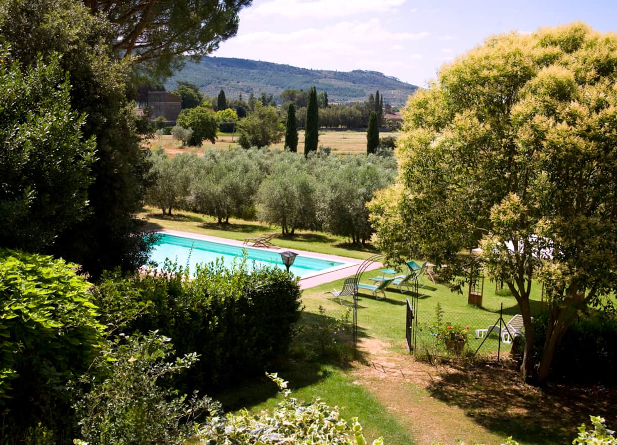 The view of the pool and olive grove from the terrace of this chef's paradise for rent in Tuscany
