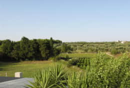 Swedish Home - view from the terrace - Depressa di Tricase - Salento