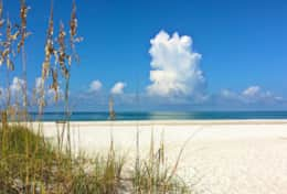 one of Anna Maria's gorgeous beaches