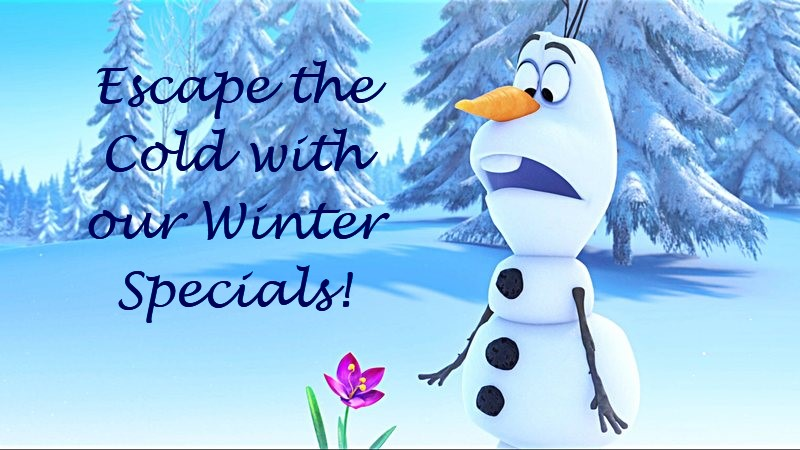 Winter Specials from Quinns' Vacation Homes