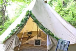 Complete privacy- Hike in Bell tent in the Shady woods